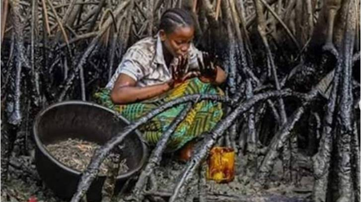 Woman collected sea food in oil spillage in the Nigeria Niger Delta region