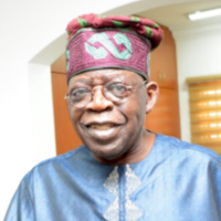 The mega properties and investments acquired by Tinubu in Lagos State after he became Governor in 1999