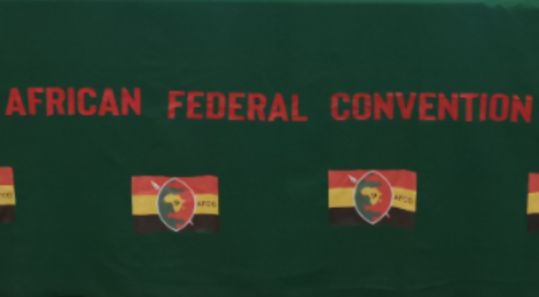 New South Africa political party African Federal Convention AFC