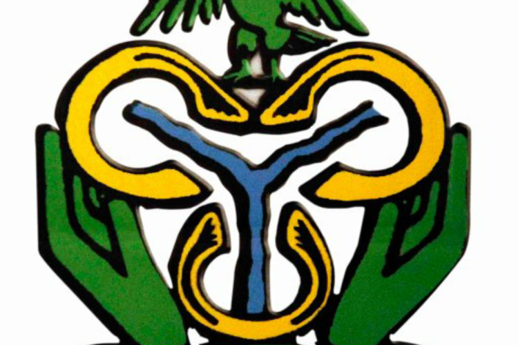 Central Bank of Nigeria CBN Logo