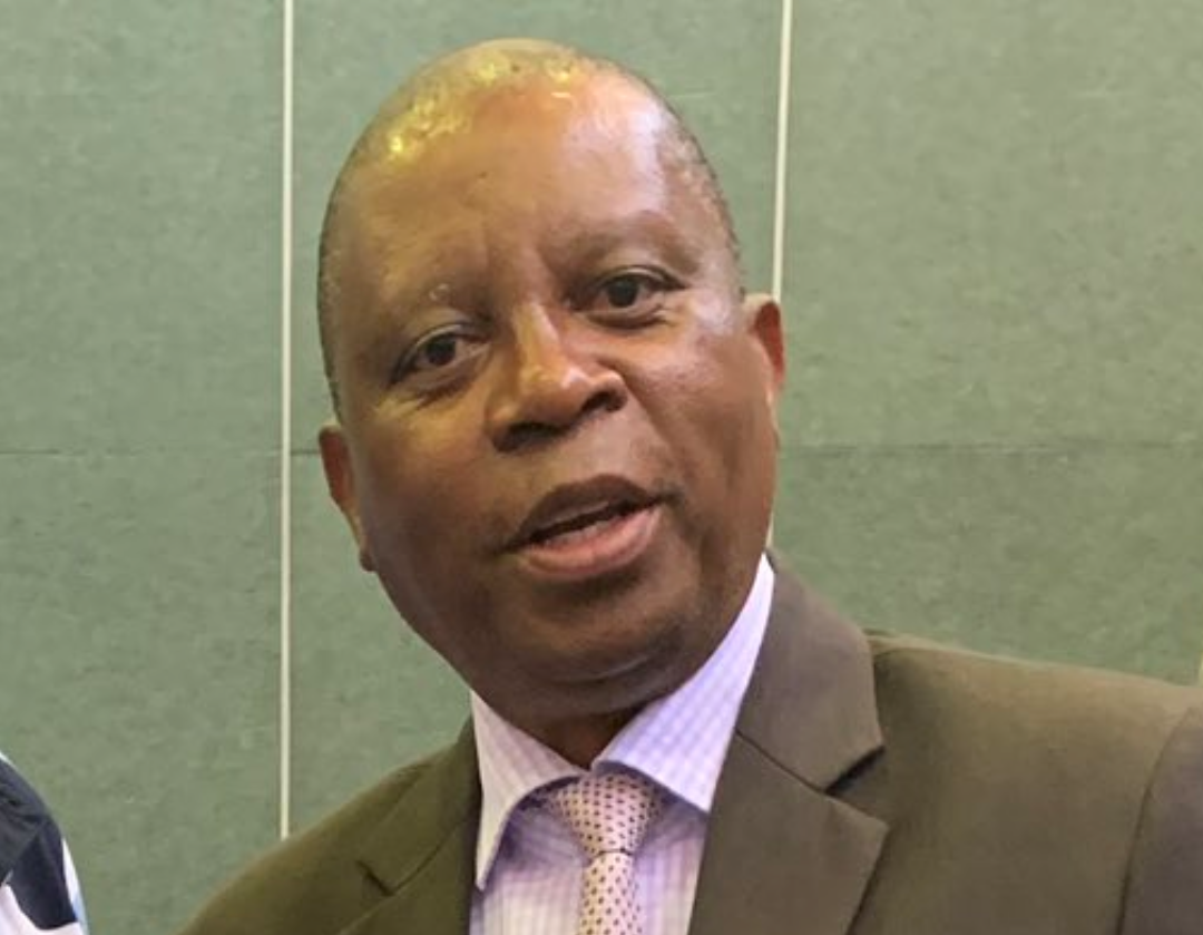 Herman Mashaba of Democratic Alliance South Africa